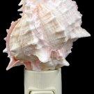 Pink Murex Shell Nitelite Sea Shell Night Lights