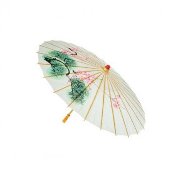 Asian Hand Painted Parasol Umbrella