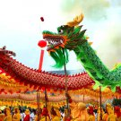14m size 4 green 8 adult silk frabic CHINESE DRAGON DANCE Folk Festival mascot Costume