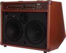 TA30 30 Watt Acoustic Guitar Amplifier