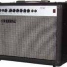 TE40 40 Watt Solid State Guitar Amplifier