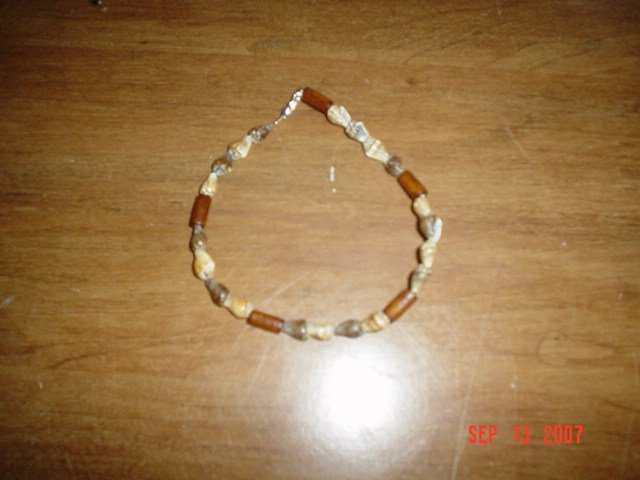 Water and Earth Shell Anklet