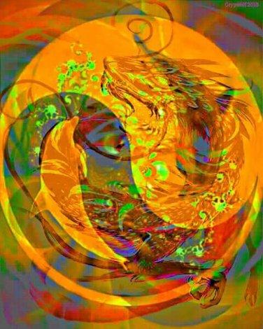 ying yang dolphins water dragon