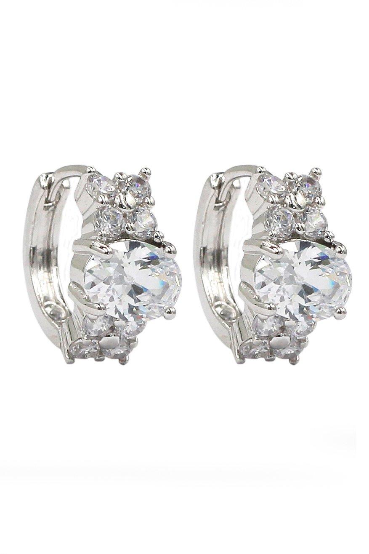 Noble oval crystal silver earrings