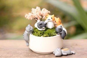 6pc Mini Crawling Cat Fairy Garden Figure, Miniature Figurines, Desk Decoration