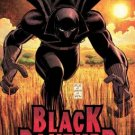 2005 T'CHALLA BLACK PANTHER POSTER JOHN ROMITA 24x36