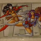 VINTAGE 1996 SHI POSTER art by WILLIAM BILL TUCCI 22x32