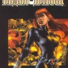 BLACK WIDOW TPB (Marvel Knights)