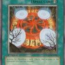 Yugioh Forbidden Graveyard (TSHD-EN060) 1st edition near mint card Common