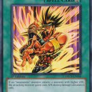 YUGIOH YU-GI-OH! AMAZONESS FIGHTING SPIRIT DREV-EN054