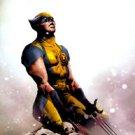 Wolverine #14 (2011) near mint comic