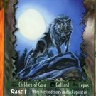 Rage Questor Treetalker (Unlimited Edition) near mint card