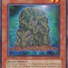 Yugioh Wall of Ivy (CSOC-EN004) Unlimited Edition near mint card Common
