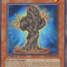Yugioh Copy Plant (CSOC-EN005) Unlimited Edition near mint card Common