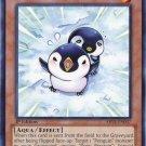 Yugioh Puny Penguin (ABYR-EN037) 1st edition near mint card Common