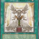 Yugioh Dawn of the Herald (TSHD-EN059) unlimited edition near mint card Common
