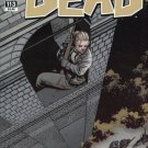 The Walking Dead #113 (2013) near mint comic