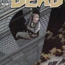 The Walking Dead #113 (2013) near mint comic