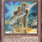 Yugioh Shield Warrior (TDGS-EN005) unlimited edition near mint card Silver Letter Rare