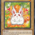 Yugioh Bunilla (PHSW-EN001) Unlimited Edition near mint card Common