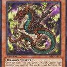 Yugioh Mythic Tree Dragon (SHSP-EN010) 1st edition near mint card Common