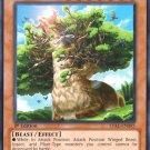 Yugioh Alpacaribou, Mystical Beast of the Forest (LVAL-EN095) Unl edition near mint card Common