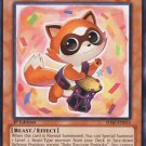 Yugioh Baby Raccoon Ponpoko (SHSP-EN014) 1st edition near mint card Common