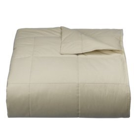 Woolrich Cream/Ivory Down Blanket - Full/Queen