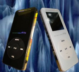 1 GIG MP3 / MP4 and VIDEO PLAYER
