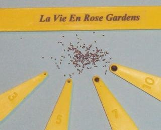 DON'T WASTE ANY SEEDS ... Use your Seed SpoonsTM Sowing TOOL Set