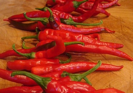Capsicum Cayenne Pepper Vegetable Herb SEEDS