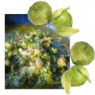 PERFECT FOR SALSA Tomatillo physalis VEGETABLE Seeds
