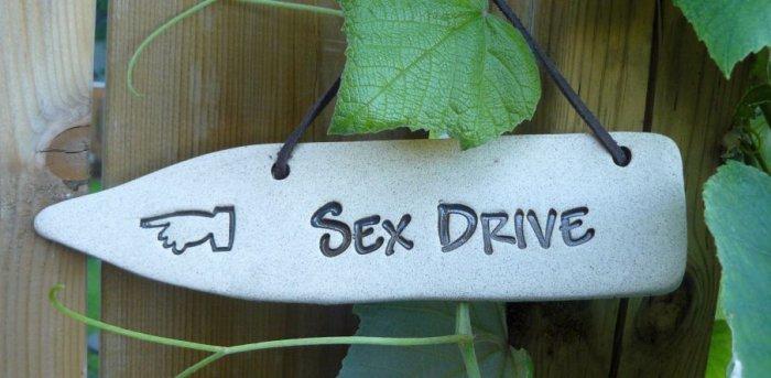 'SEX DRIVE' Home or Garden decor DETOUR SIGN