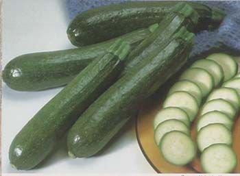 Zucchini 'Black Beauty' (Cucurbita spp.)  SEEDS