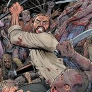 The Walking Dead #160 B