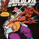 Daredevil, Vol. 1 #171
