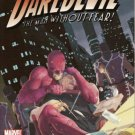 Daredevil, Vol. 2 #501
