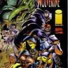 Badrock / Wolverine #1