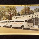 VINTAGE  POSTCARD ALAGA COACH LINES. BUY WAR BONDS,  GREYHOUND BUS
