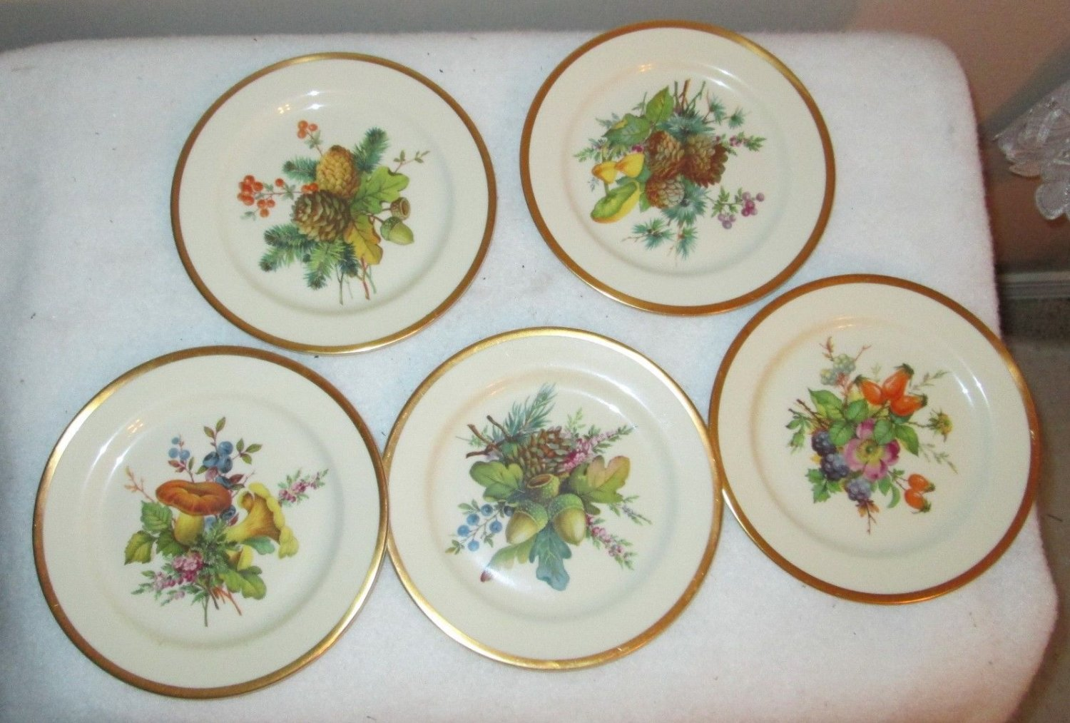 5  COLLECTIBLE PICKARD STUDIO CHINA  GOLD HAND PAINTED DECORATED PLATE  ACORNS