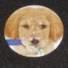 Puppy dog in the snow photo on a badge, pin - D 0002