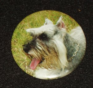 Schnauzer dog on badge, pin back - D 0003