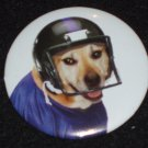 Yellow Lab dog wearing a helmet on a badge, pin D 0004
