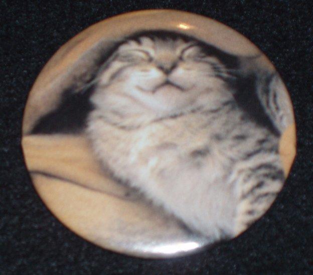 Tabby kitten, cat taking a nap, photo on badge, pin C0002