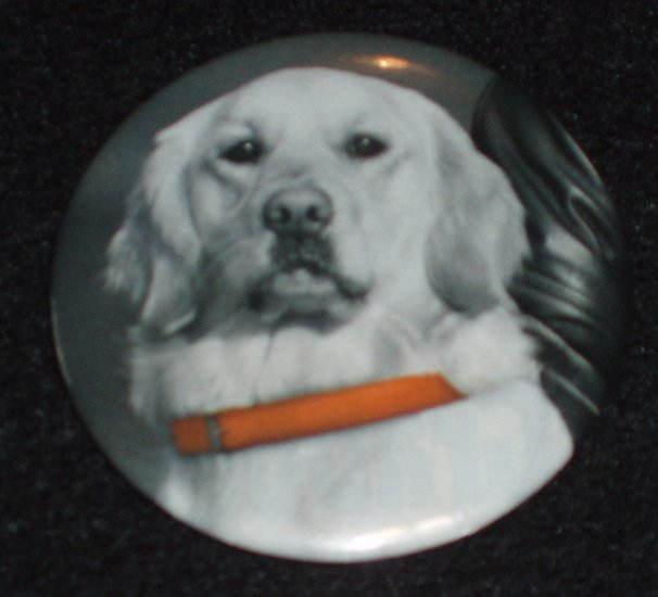 Dog with orange collar on a badge, pin D 0008