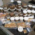 25,000+ HUGE LOT GOLD MIL-SPEC CONTACTS AMP TE TYCO HYPERTRONICS AU