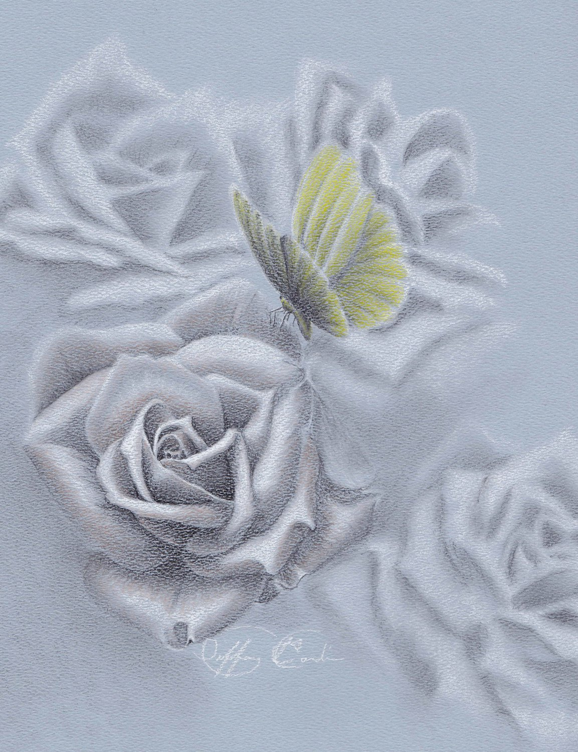 Yellow Butterfly and Rose Flowers Pencil Drawing Gicleé Fine Art Print