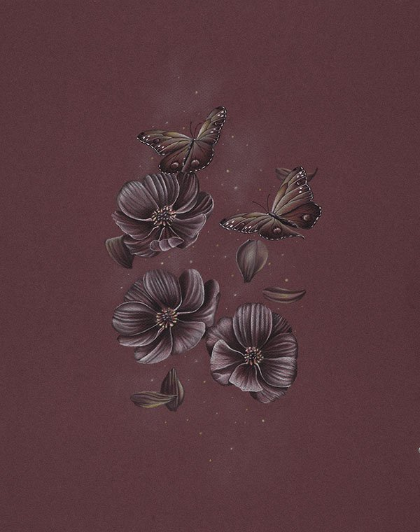 Butterflies Flying Through Chocolate Cosmos Flowers Pencil Drawing Gicleé Fine Art Print