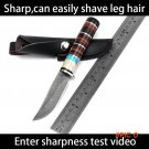 High carbon steel Handmade hunting knives Damascus pattern camping survival tactical pocke