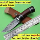 Handmade Damascus fixed hunting knife 67 layer Damascus steel Ebony+red pear wood handle t